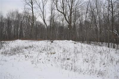 Spring Valley WI Residential Lots & Land For Sale: $41,000