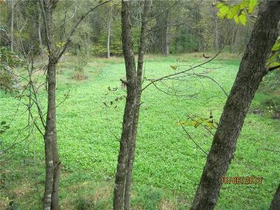 Jackson County, Clark County, Trempealeau County, Buffalo County, Monroe County, Chippewa County, Eau Claire County Residential Lots & Land For Sale: Field Road