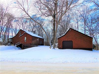 Whitehall Single Family Home For Sale: N38821 County Road D