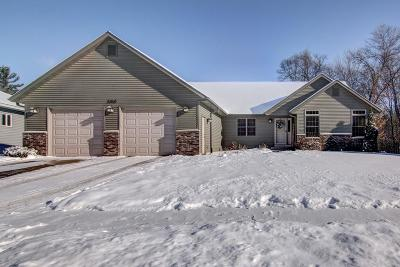 Eau Claire Single Family Home For Sale: 3643 Ridgeway Drive
