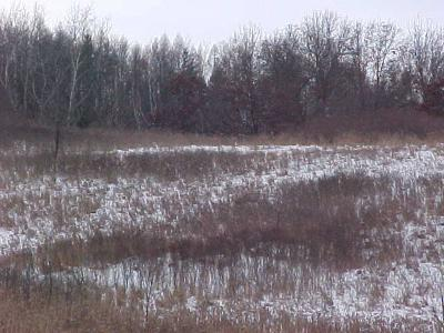 Jackson County, Clark County, Trempealeau County, Buffalo County, Monroe County, Chippewa County, Eau Claire County Residential Lots & Land For Sale: 00 Hotchkiss Rd