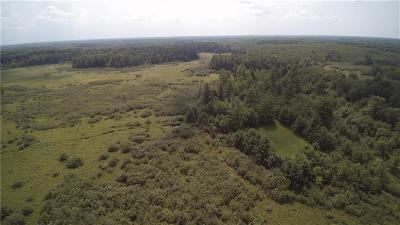 Jackson County, Clark County Residential Lots & Land For Sale: N2496 Badger Avenue