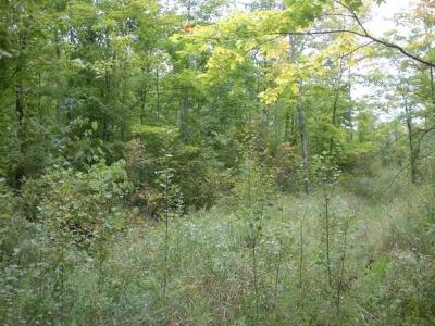Residential Lots & Land For Sale: Spring Creek Road