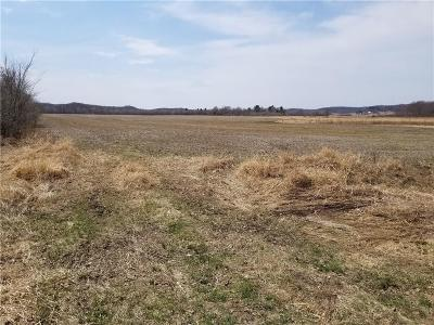 Jackson County, Clark County, Trempealeau County, Buffalo County, Monroe County, Chippewa County, Eau Claire County Residential Lots & Land For Sale: Lot 1 20th Ave