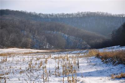Jackson County, Clark County, Trempealeau County, Buffalo County, Monroe County, Chippewa County, Eau Claire County Residential Lots & Land For Sale: County Rd D