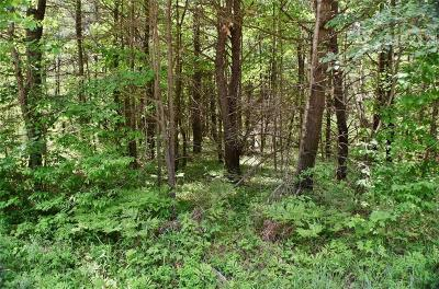 Jackson County, Clark County Residential Lots & Land For Sale: N2603 Fisher Avenue