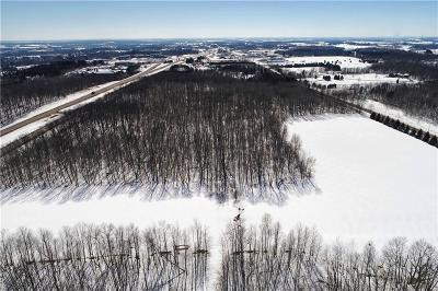 Rice Lake WI Residential Lots & Land For Sale: $155,000