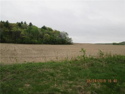 Jackson County, Clark County, Trempealeau County, Buffalo County, Monroe County, Chippewa County, Eau Claire County Residential Lots & Land For Sale: 170th Avenue