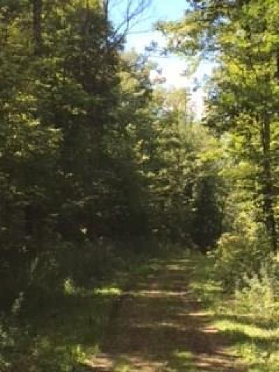 Rice Lake WI Residential Lots & Land For Sale: $160,000