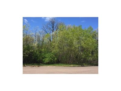 Rice Lake WI Residential Lots & Land For Sale: $22,400