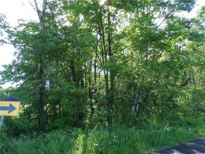 Jackson County, Clark County, Trempealeau County, Buffalo County, Monroe County, Chippewa County, Eau Claire County Residential Lots & Land For Sale: St Bridget Drive