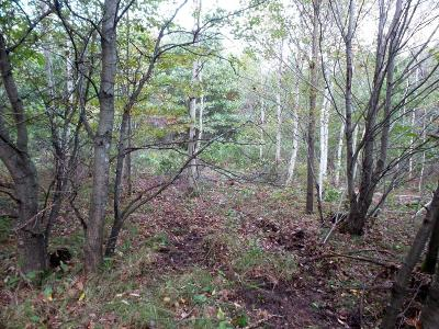 Jackson County Residential Lots & Land For Sale: N8622 Timber Lane