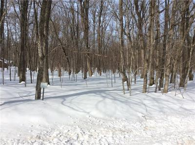 Birchwood Residential Lots & Land For Sale: Lot 6, Blk. 28 Division 5