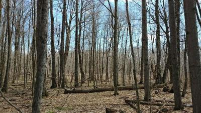 Birchwood Residential Lots & Land For Sale: Lot 4 Timber Trail Lane