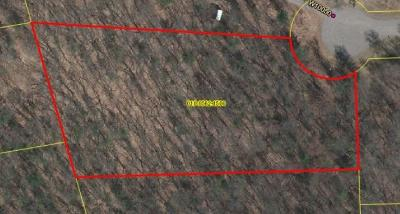 Black River Falls WI Residential Lots & Land Sold: $21,000