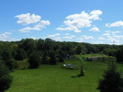Thorp WI Residential Lots & Land For Sale: $40,000