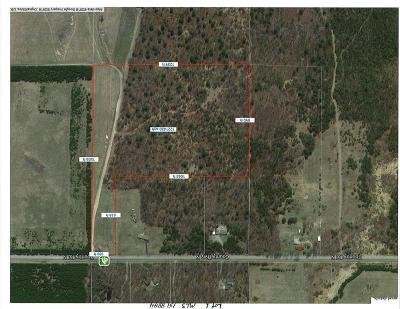 Jackson County, Clark County, Trempealeau County, Buffalo County, Monroe County, Chippewa County, Eau Claire County Residential Lots & Land For Sale: Lot 1 27.96 Acres Cty Hwy N