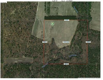 Jackson County, Clark County, Trempealeau County, Buffalo County, Monroe County, Chippewa County, Eau Claire County Residential Lots & Land Active Offer: Lot 3 40 Acres Cty Rd N