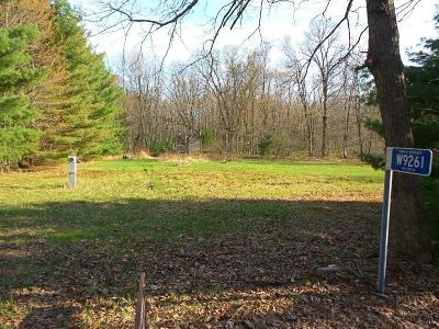 Merrillan WI Residential Lots & Land Sold: $29,000