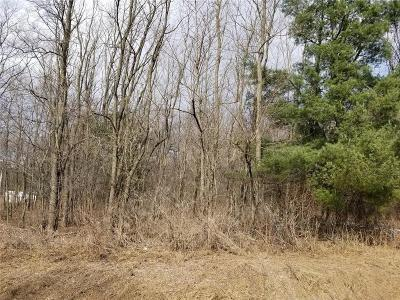 Residential Lots & Land Sold: White Street