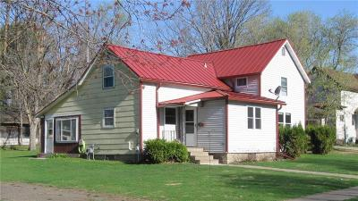 Barron County Single Family Home For Sale: 231 S Mill Street