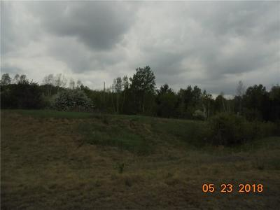Rice Lake Residential Lots & Land For Sale: 16th Avenue