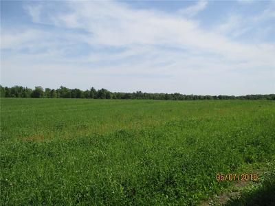 Clark County Residential Lots & Land For Sale: Worden Road