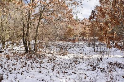 Black River Falls WI Residential Lots & Land For Sale: $31,800