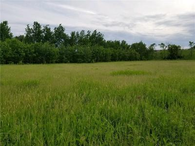 Cameron Residential Lots & Land For Sale: 314 Babes Lane