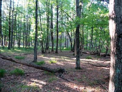 Hatfield WI Residential Lots & Land For Sale: $35,000