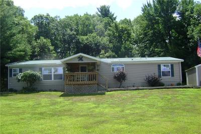 Jackson County, Clark County Manufactured Home For Sale: W8967 Oak Ridge Road