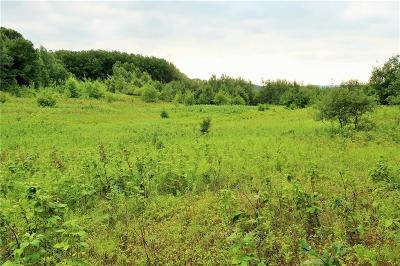 Jackson County, Clark County, Trempealeau County, Buffalo County, Monroe County, Chippewa County, Eau Claire County Residential Lots & Land For Sale: W16679 County Road H