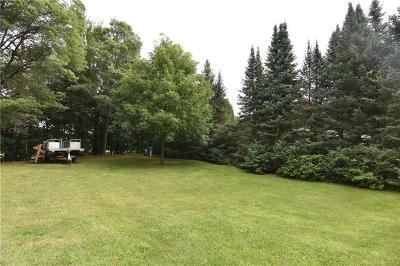 Rice Lake WI Residential Lots & Land For Sale: $49,999
