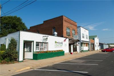 Jackson County Commercial For Sale: 226/228 Main Street