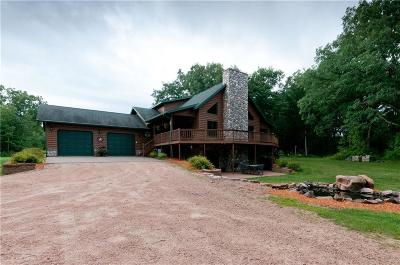Rice Lake WI Single Family Home For Sale: $424,900