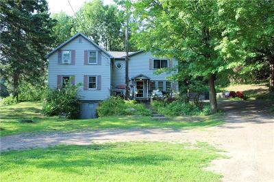 Cameron Single Family Home For Sale: 1587 County Highway Ss