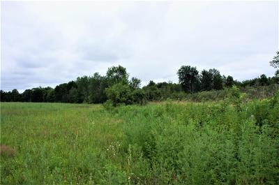 Jackson County, Clark County, Trempealeau County, Buffalo County, Monroe County, Chippewa County, Eau Claire County Residential Lots & Land For Sale: 50 Acres Rock Creek Road