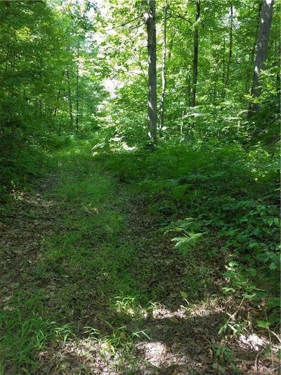 Jackson County, Clark County, Trempealeau County, Buffalo County, Monroe County, Chippewa County, Eau Claire County Residential Lots & Land For Sale: Lot 0 200th Street