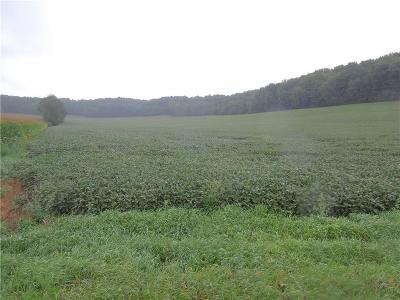 Jackson County, Clark County, Trempealeau County, Buffalo County, Monroe County, Chippewa County, Eau Claire County Residential Lots & Land For Sale: 6850 Hwy K-Kk