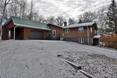 Webster Single Family Home For Sale: 27450 Pepin Road