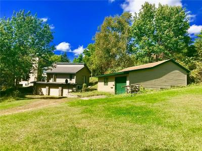 Menomonie Single Family Home For Sale: E4902 Hwy C