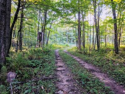 Jackson County, Clark County, Trempealeau County, Buffalo County, Monroe County, Chippewa County, Eau Claire County Residential Lots & Land For Sale: Hwy Q