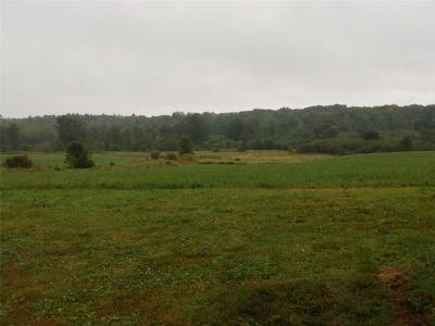 Jackson County, Clark County, Trempealeau County, Buffalo County, Monroe County, Chippewa County, Eau Claire County Residential Lots & Land For Sale: 250th Street