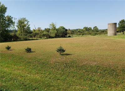Jackson County, Clark County, Trempealeau County, Buffalo County, Monroe County, Chippewa County, Eau Claire County Residential Lots & Land For Sale: S11670 County Road Z