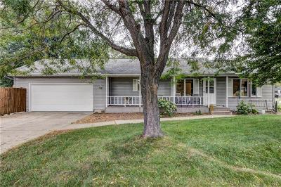 Eau Claire Single Family Home For Sale: 3506 Hester Street