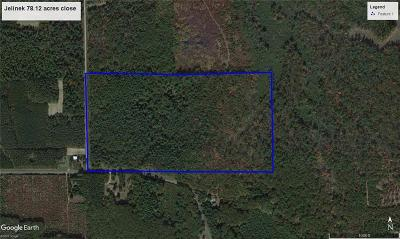 Jackson County, Clark County Residential Lots & Land For Sale: 4511 Paulson Road