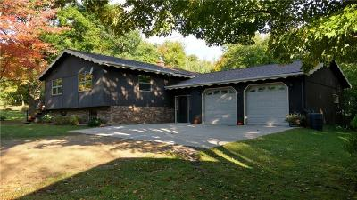 Barron County Single Family Home For Sale: 382 9th Avenue
