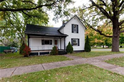 Rice Lake Single Family Home For Sale: 204 Phipps Avenue