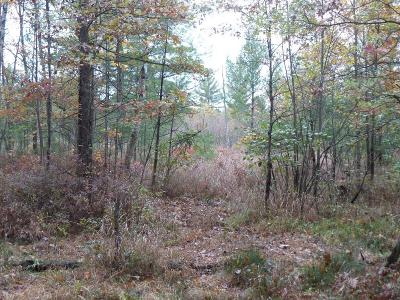 Neillsville WI Residential Lots & Land For Sale: $188,500