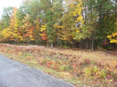 Neillsville WI Residential Lots & Land For Sale: $39,900